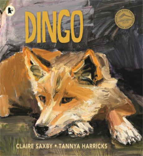 Dingo by children's author Claire Saxby