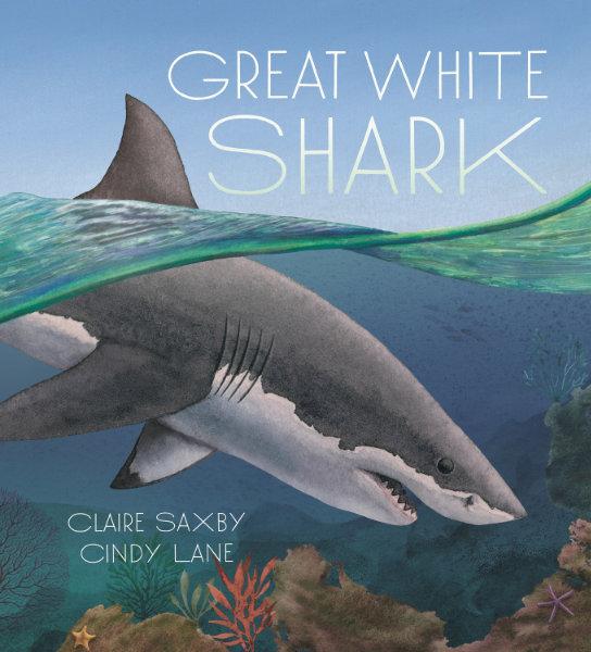 Great White Shark is in the house … ahem … ocean
